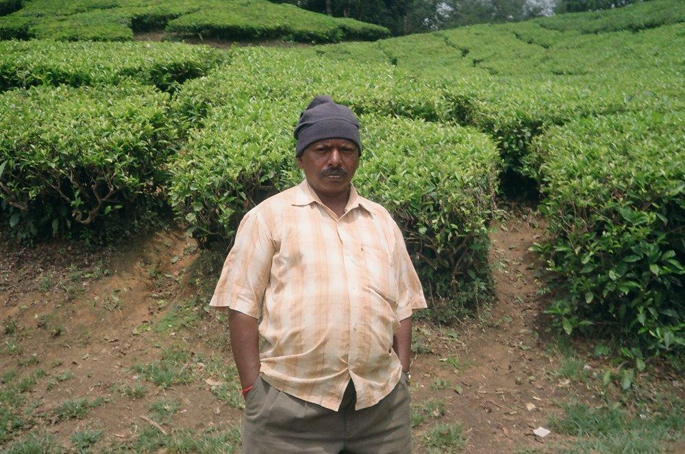 Munnar_Kerala_india_Eagertourist.jpg
