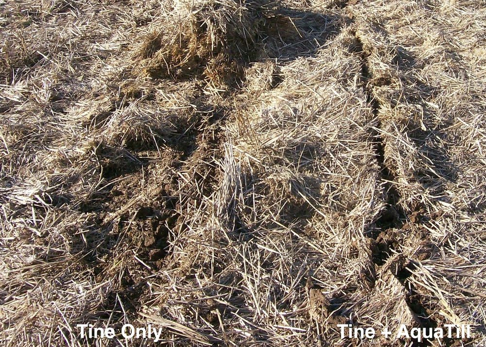 Knifepoint tine through windrow of 8T wheat crop Dubbo, without (left) and with (right) the liquid coulter website annotate.jpg
