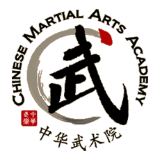 Chinese Martial Arts Academy