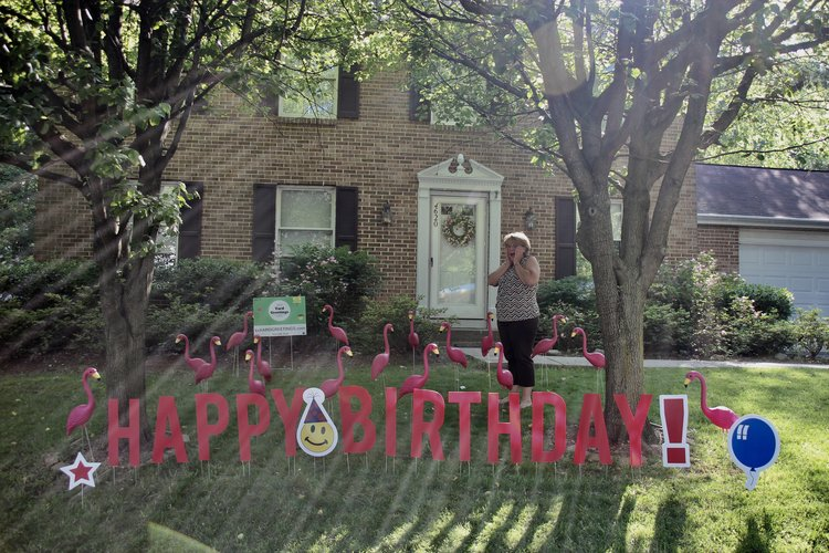 Flamingos Custom Lawn Greeting Message Board Happy Birthday Letters