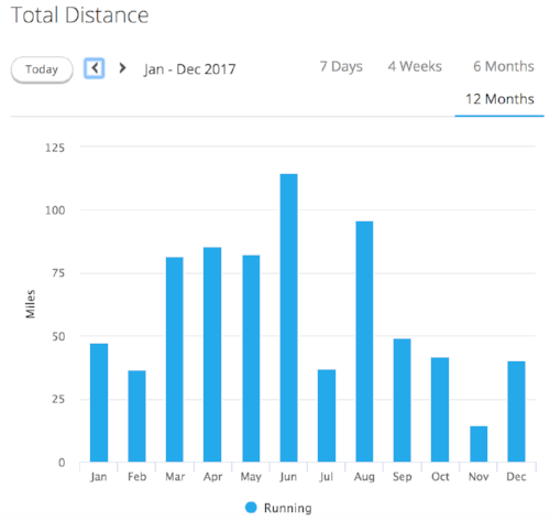 Total miles per month during 2017