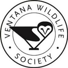 Ventana wildlife society
