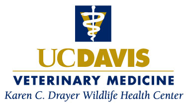 Karen C. Drayer Wildlife Health Center