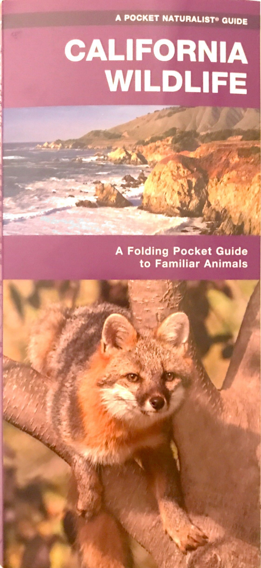 California Wildlife Pamphlet photo.JPG