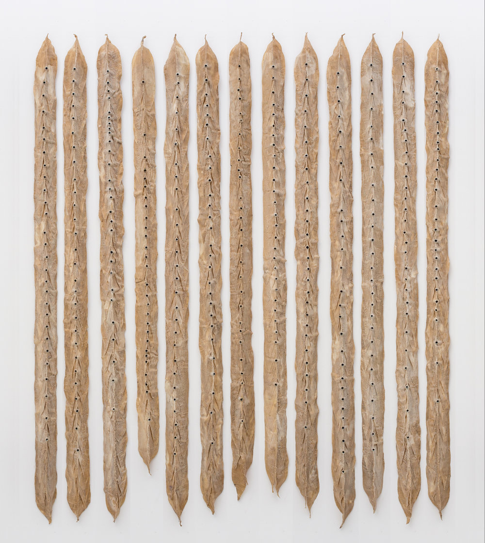 "Demeter Does the Math (and Cries), 2000, Waxed cloth, shell casings, thread, wood, 80"" x 4"" x 3.5"" (13 units)"