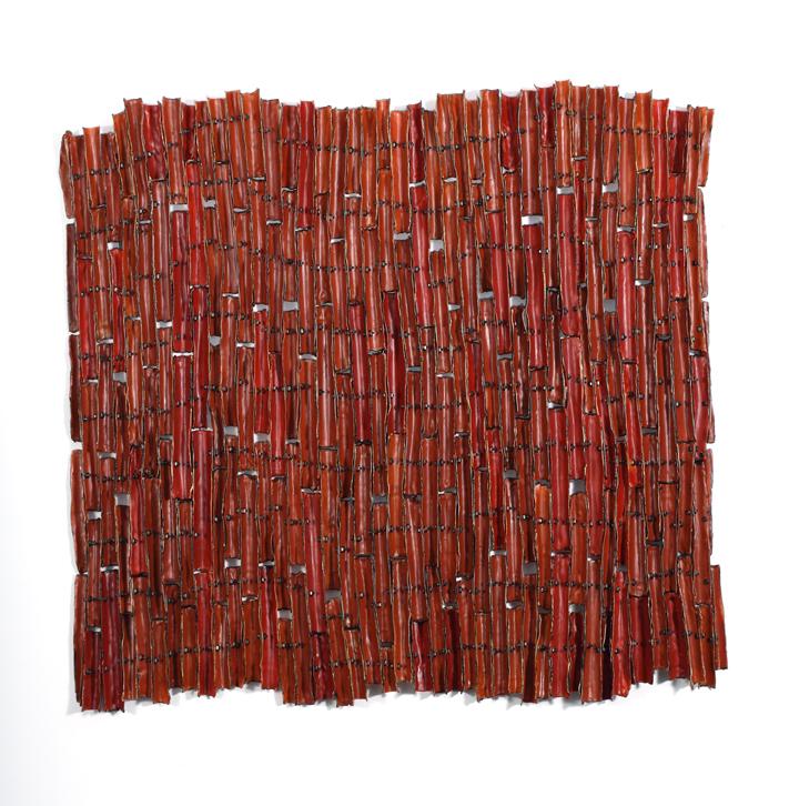 Porous Borders (Red)