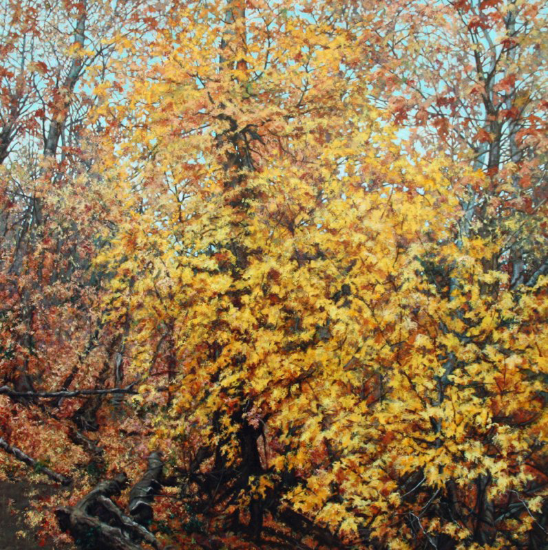 "P.S. - Fall Oak, 60"" x 60"" Oil on Canvas"