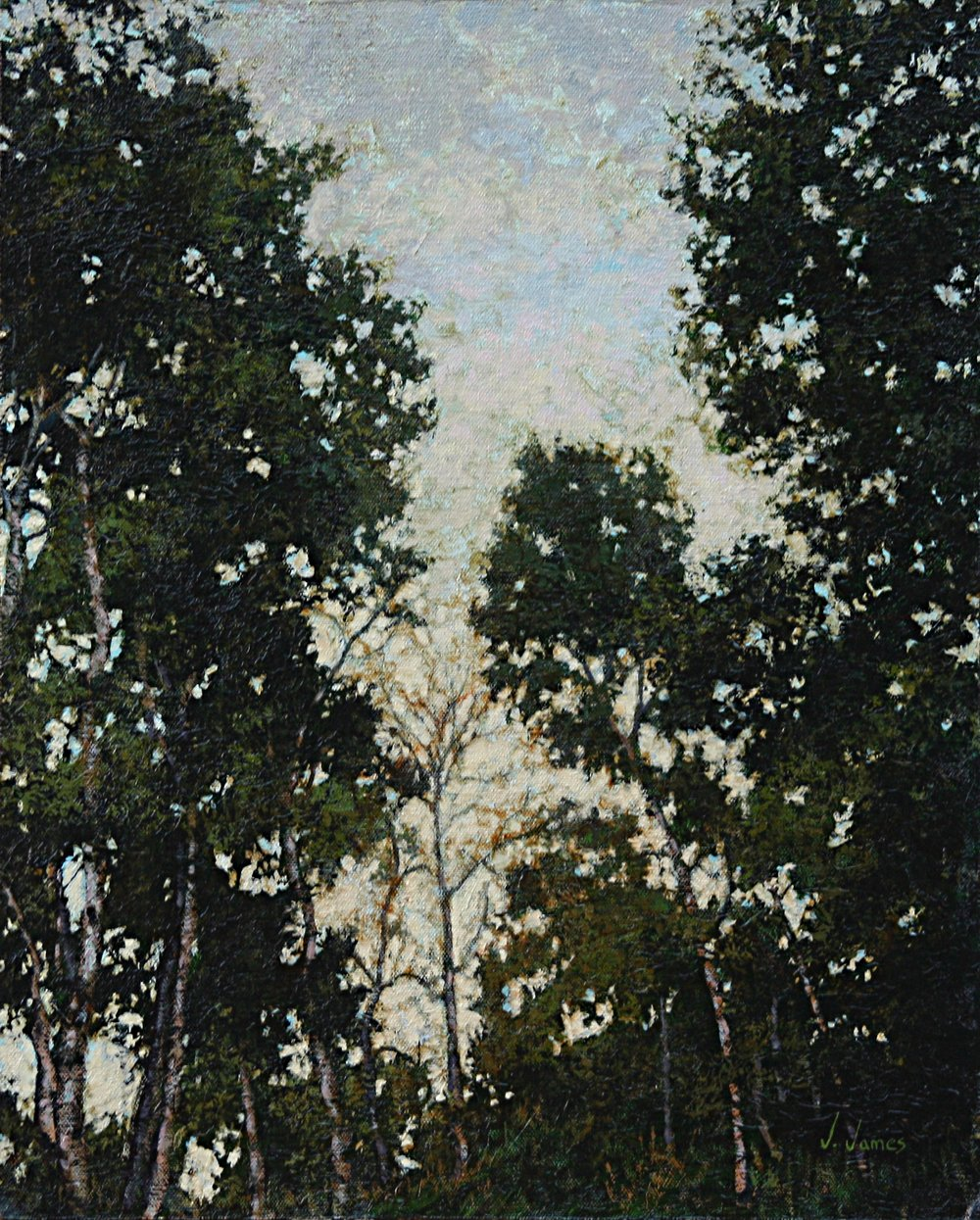 "Meeting of the Trees, 20"" x 16"" Oil on Canvas"