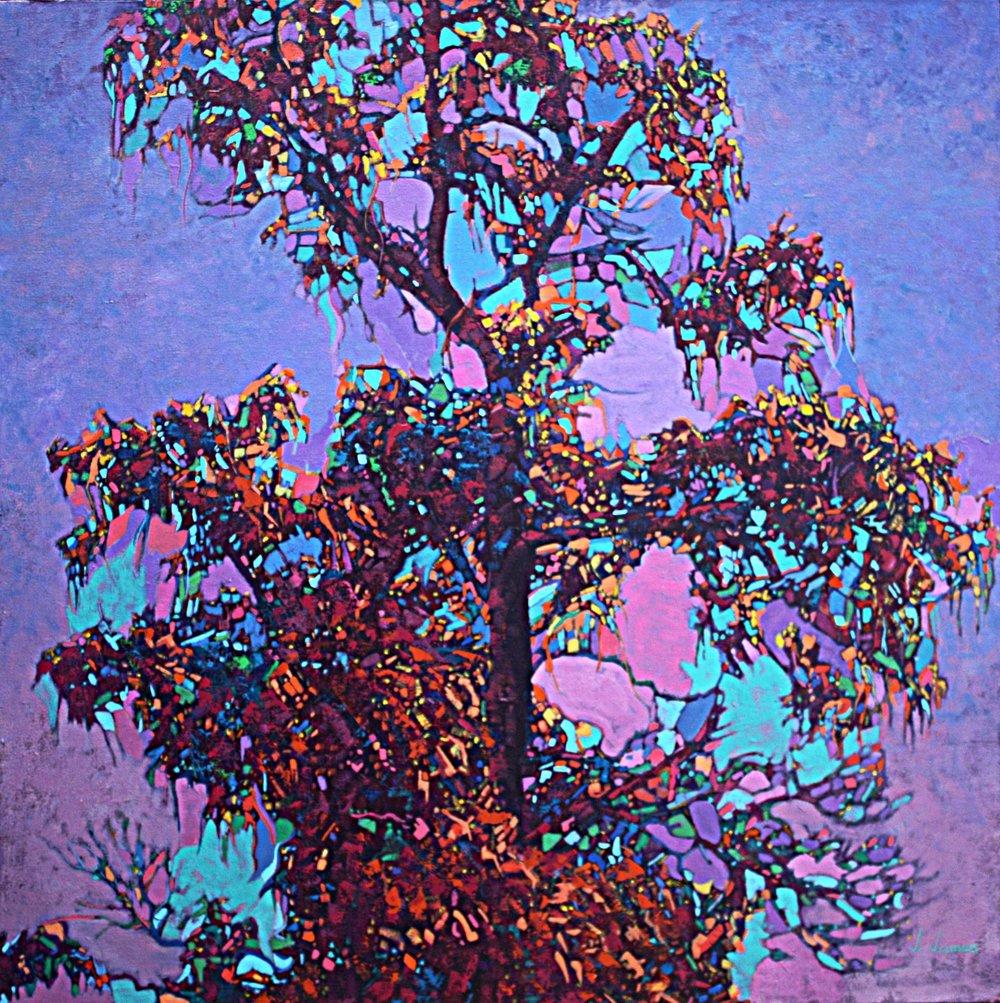 "Talking Tree, 36"" x 36"", Oil on Canvas"