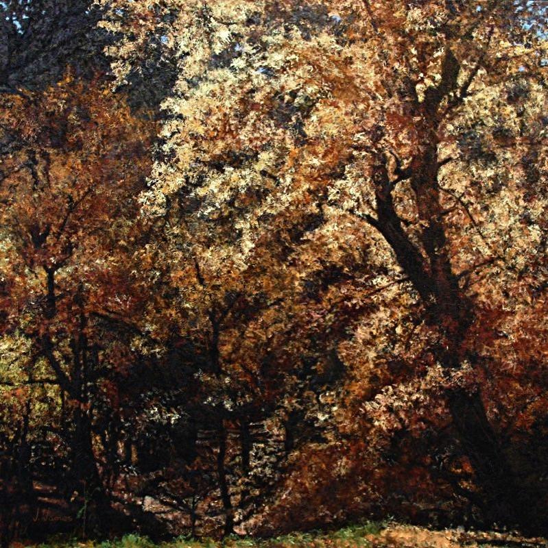 "Golden Beauty, 36"" x 36"" Oil on Canvas"