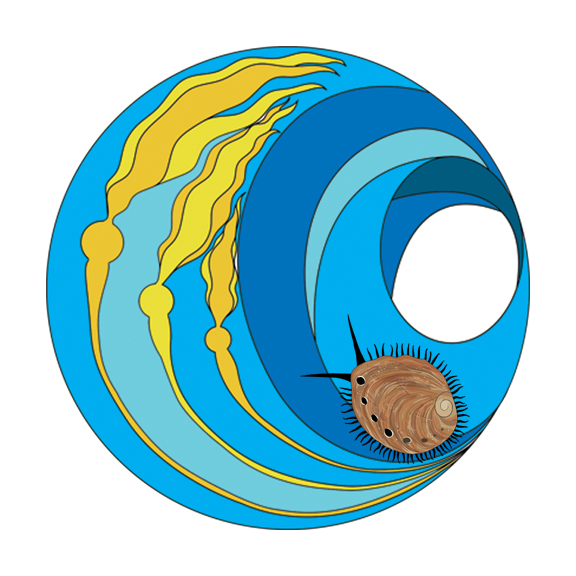 A logo designed for the Ocean Acidification lab at Stanford's Hopkins Marine Station, which pays particular attention to local Abalone populations and how acidification is affecting them.