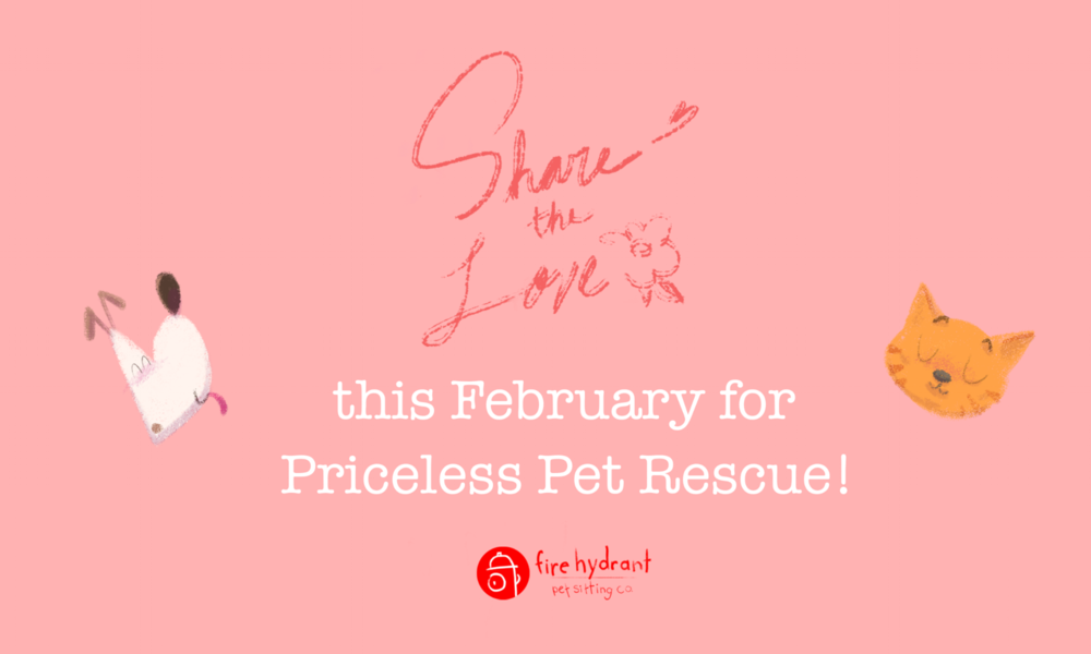 Share The Love This February