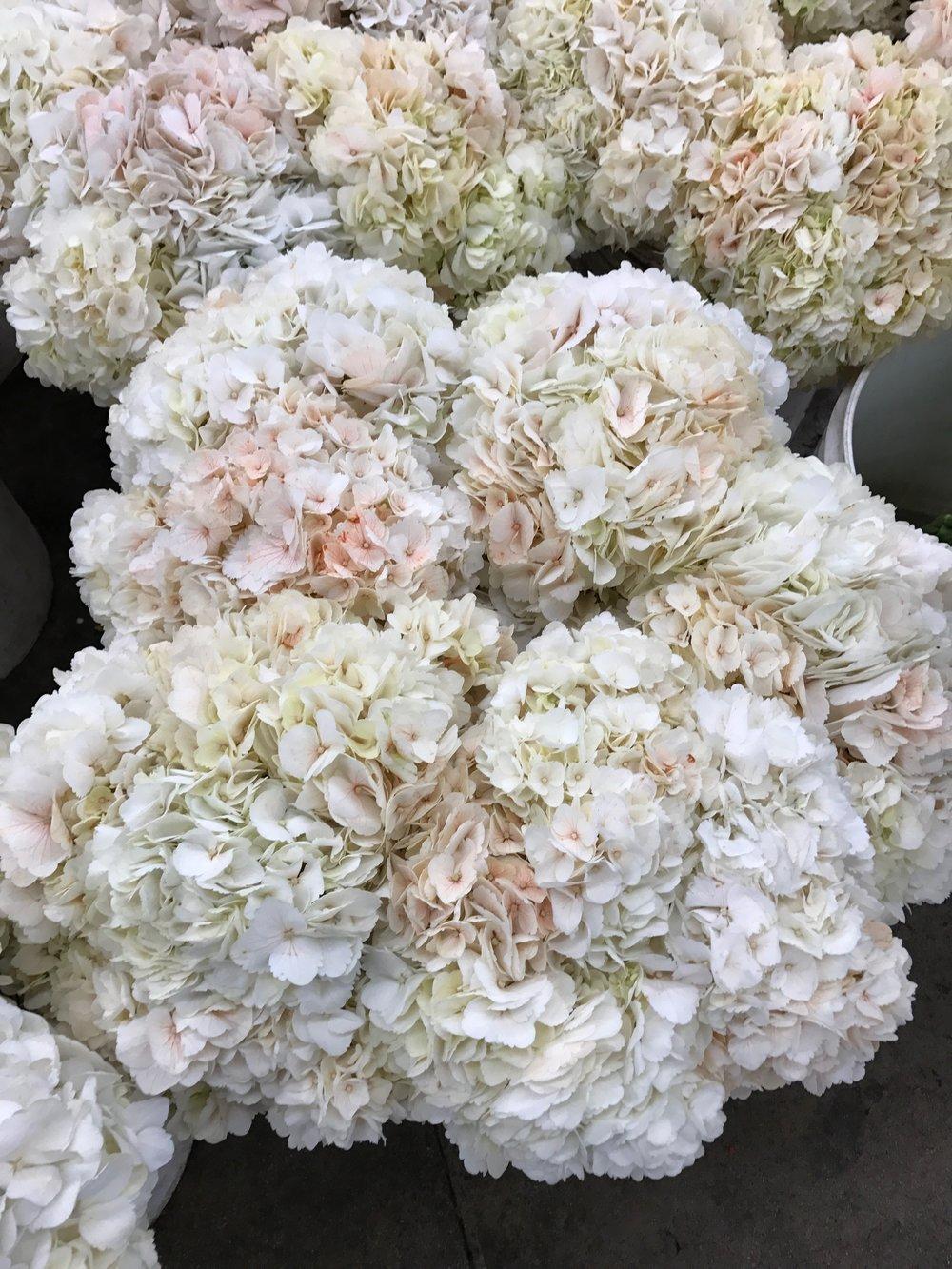 Los Angeles Flower Market