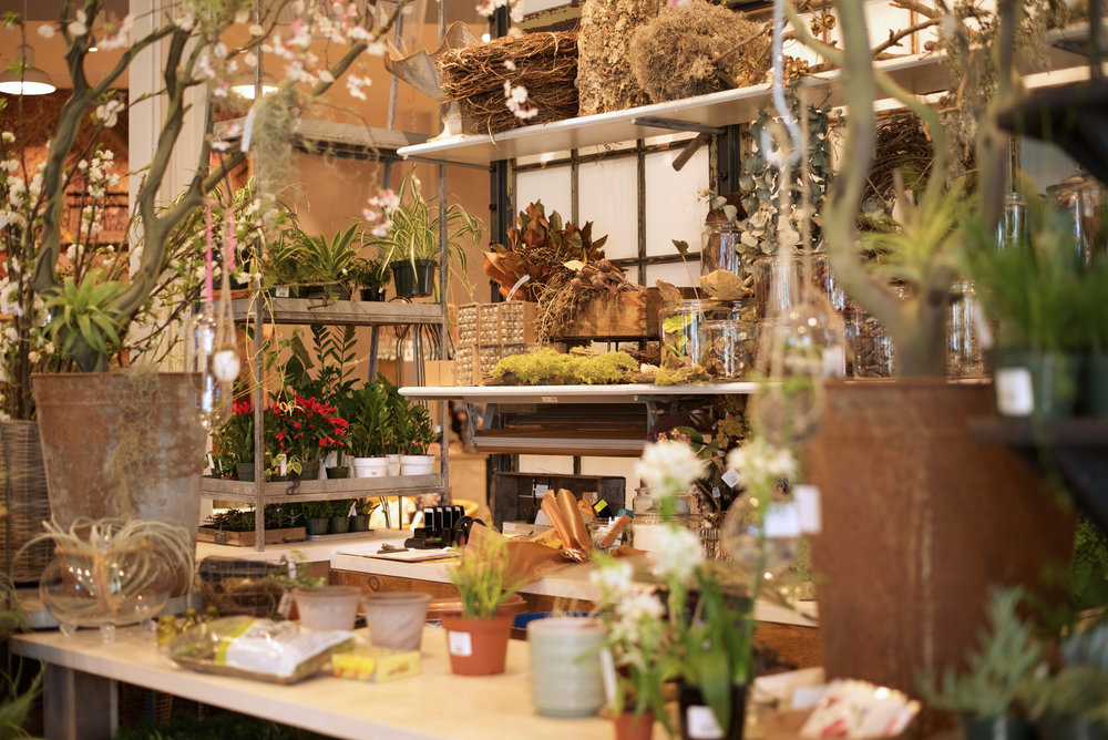 Anthropologie Terrain