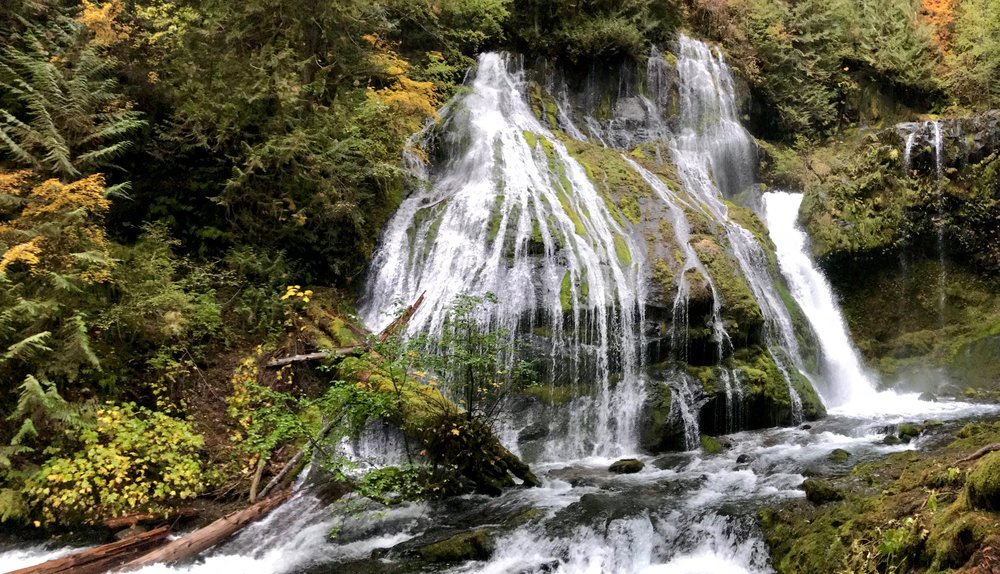 Panther Creek Falls- we ended up scaling rocks and going down a 10 foot drop to get to the base of the falls.