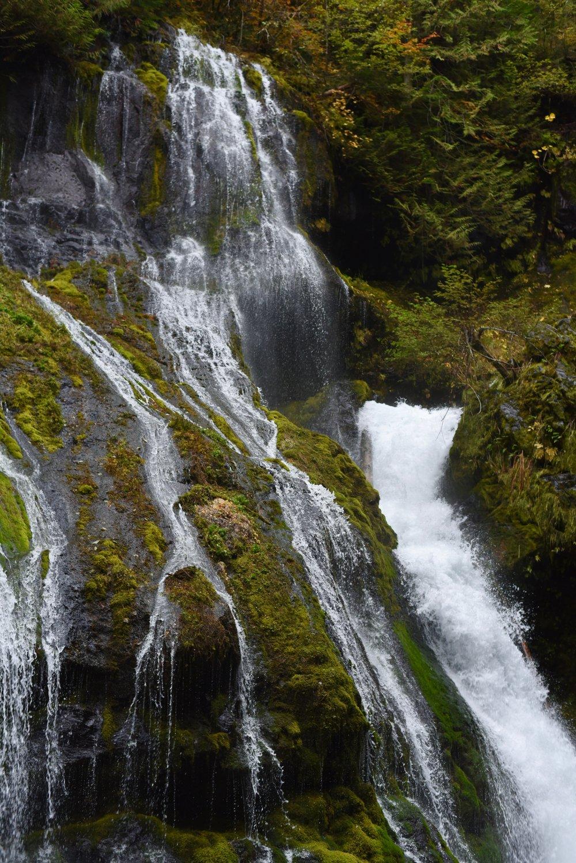 Hiking in Portland_DSC_9832.jpg