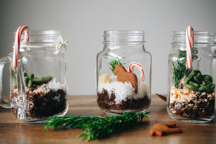 gingerbread+terrariums-16