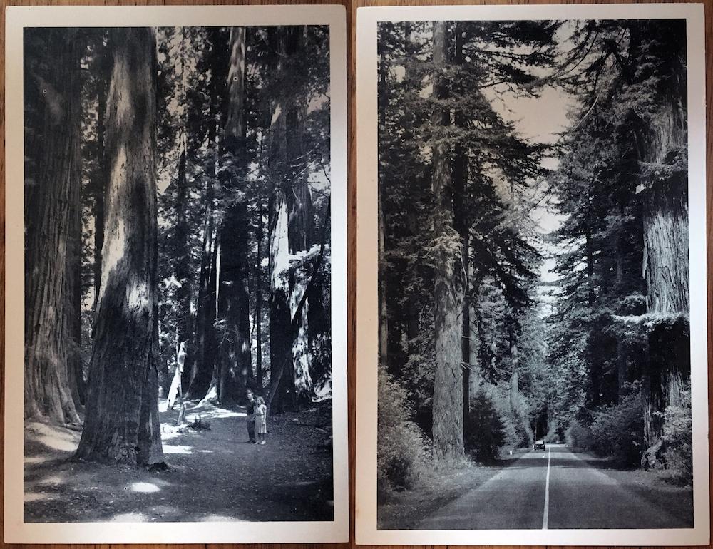 postcard-pair-2.jpg