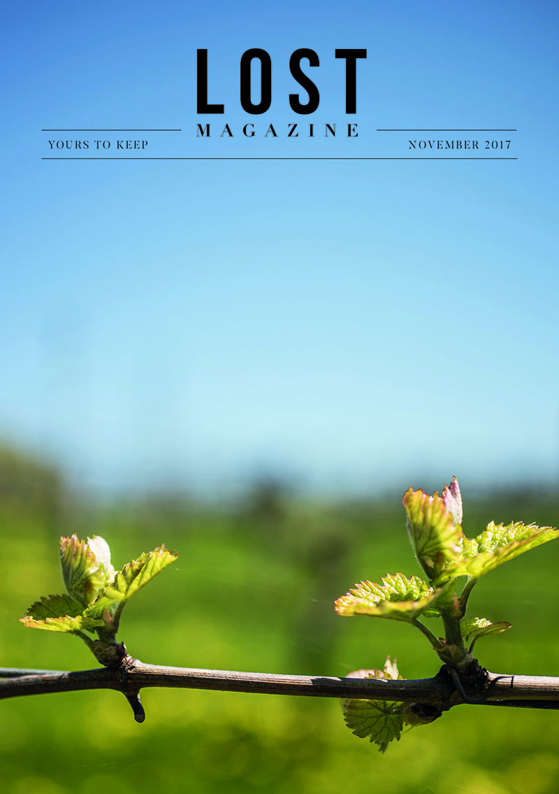 Lost Magazine November 2017