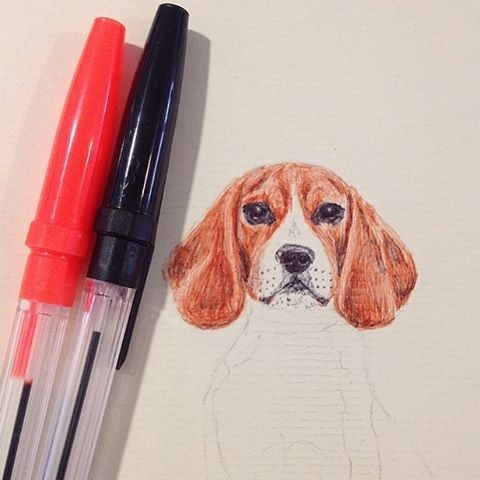 Throwback Thursday - loved drawing this pooch!