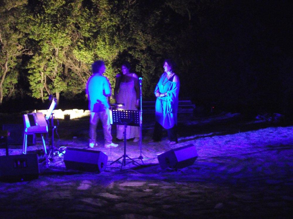Aloni festival 2013 218.JPG