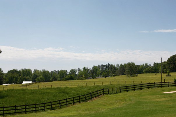 Brookside Farms Green Horse Pastures