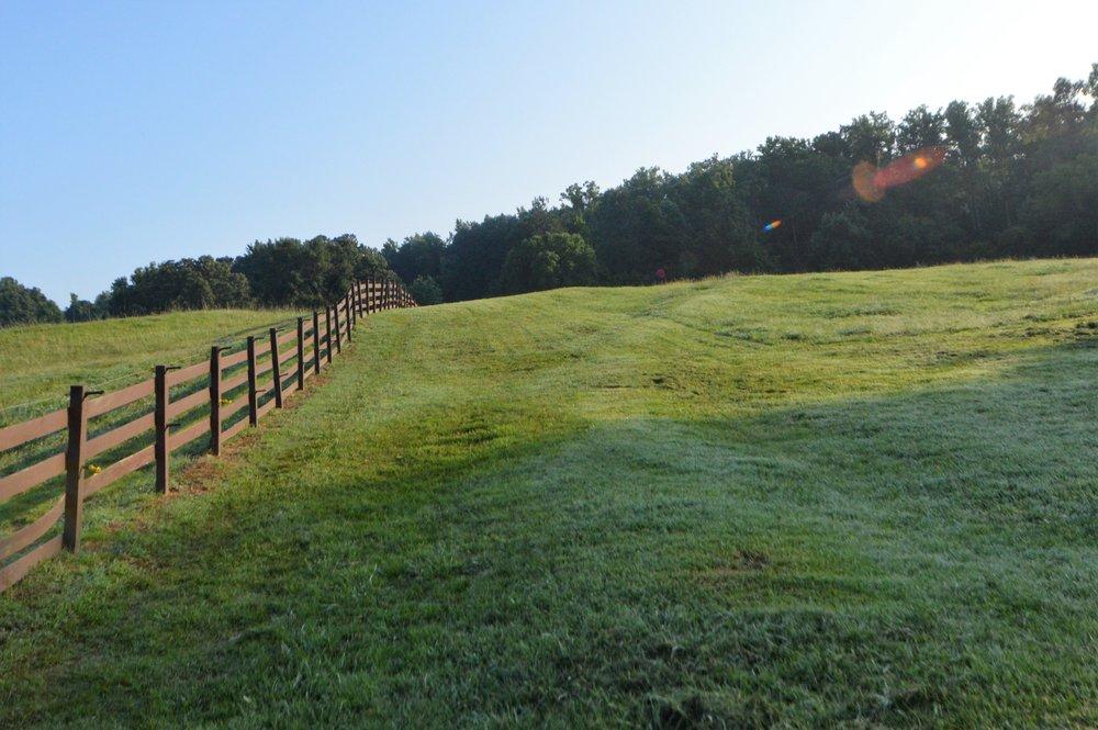 pasture11.jpg