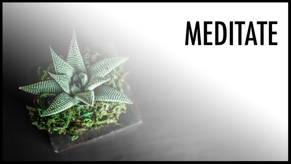 meditate plant gradient.jpg