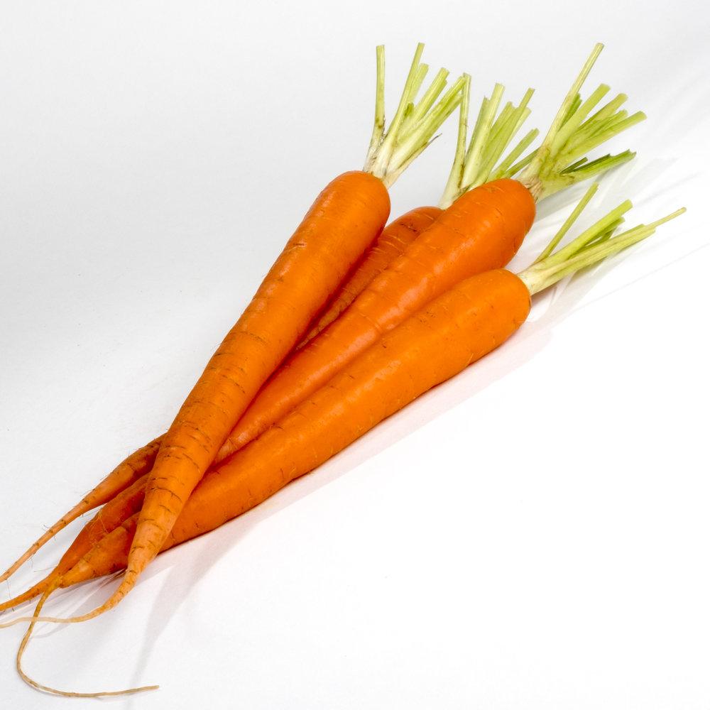 carrot 1-9.jpg
