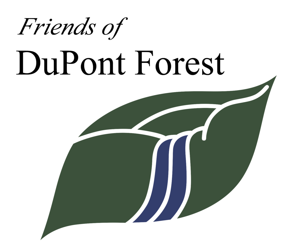 FODF-LOGO-without-White-Background-png.png