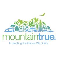 MountainTrue.png