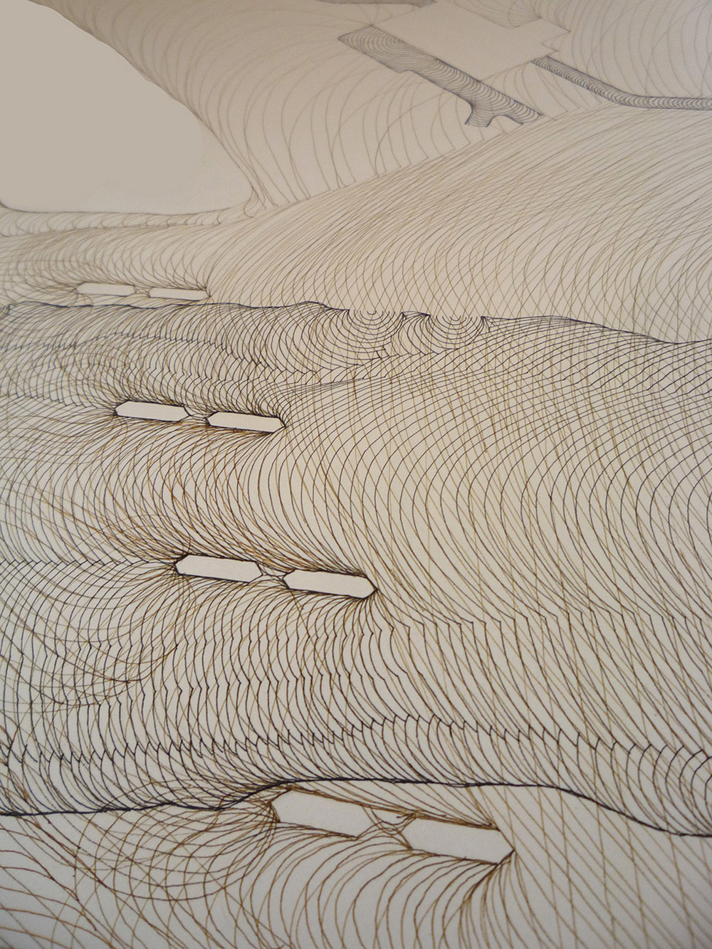 Bow Flow 1 (detail) Pen and ink drawing. Detail of 8ft pen and ink drawing that visualises the flow of water through SE Calgary. The first part of the drawing in black ink was made before the flood of June 2013, the second brown layer was made after the flood to depict the peak flood flows.