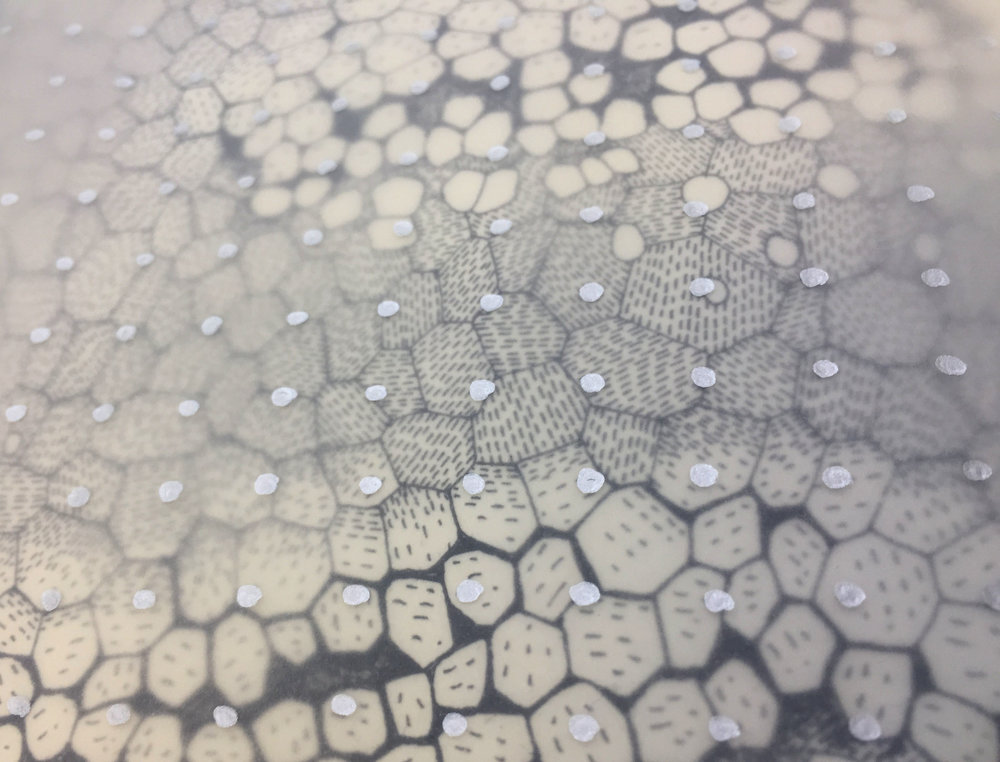 A drawing from my previous residency, combining observations of the microscopic growing patterns of an oyster shell with engineered nano grid patterns.
