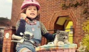 Sing_It_Kitty_Three_video-461076