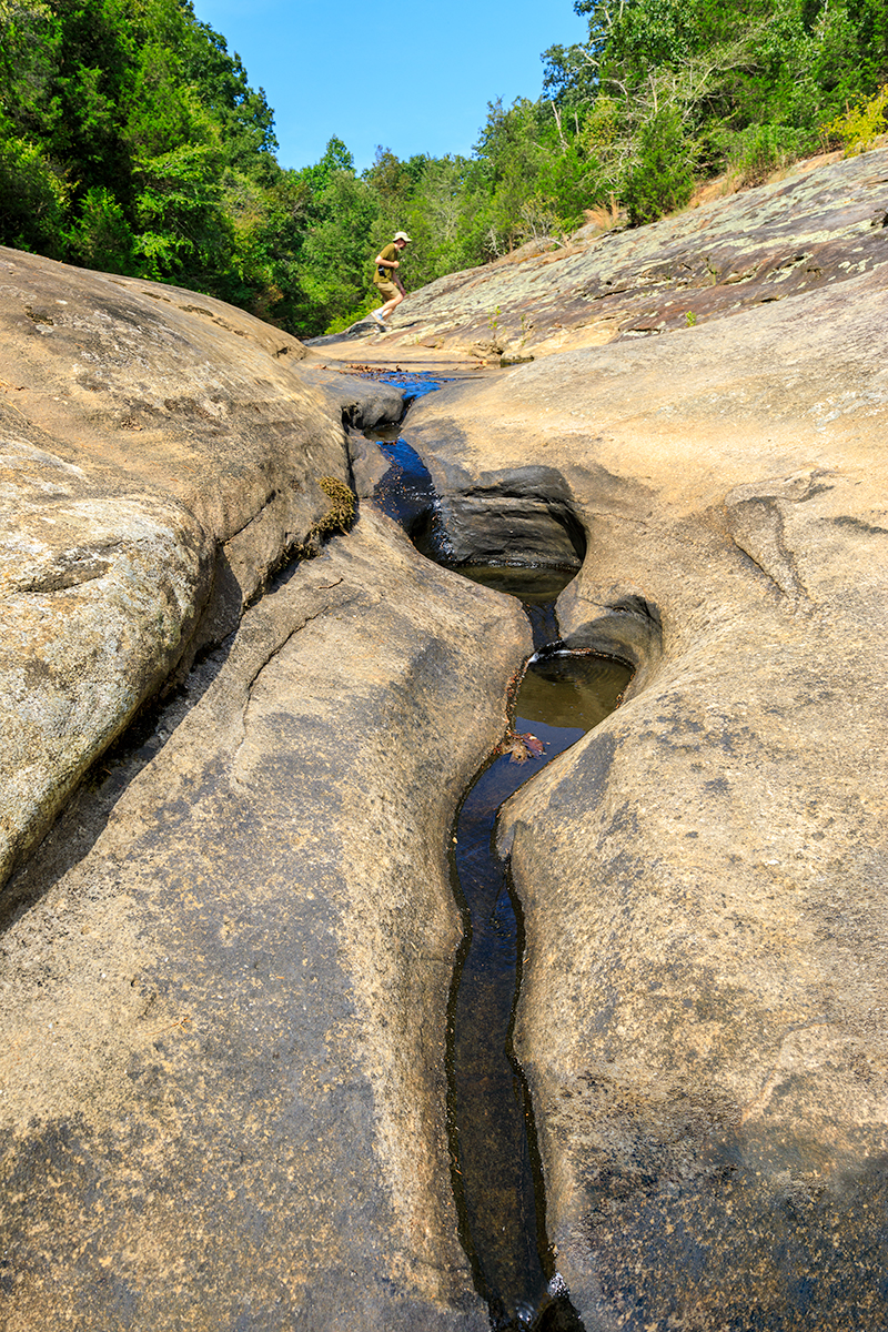 Mill Branch Spring, Shawnee National Forest