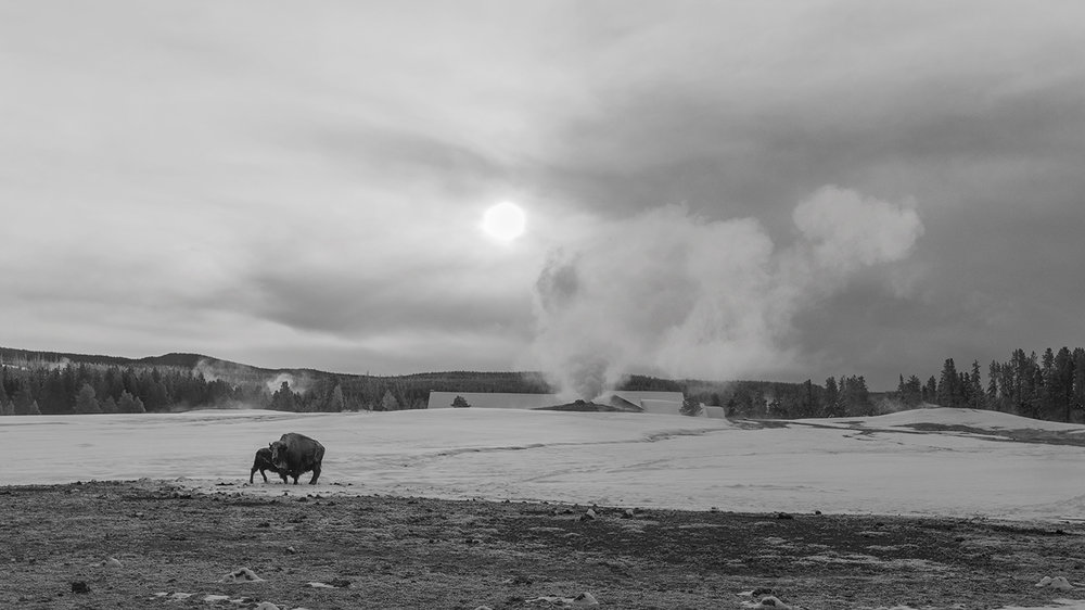Sunrise, Old Faithful Geyser