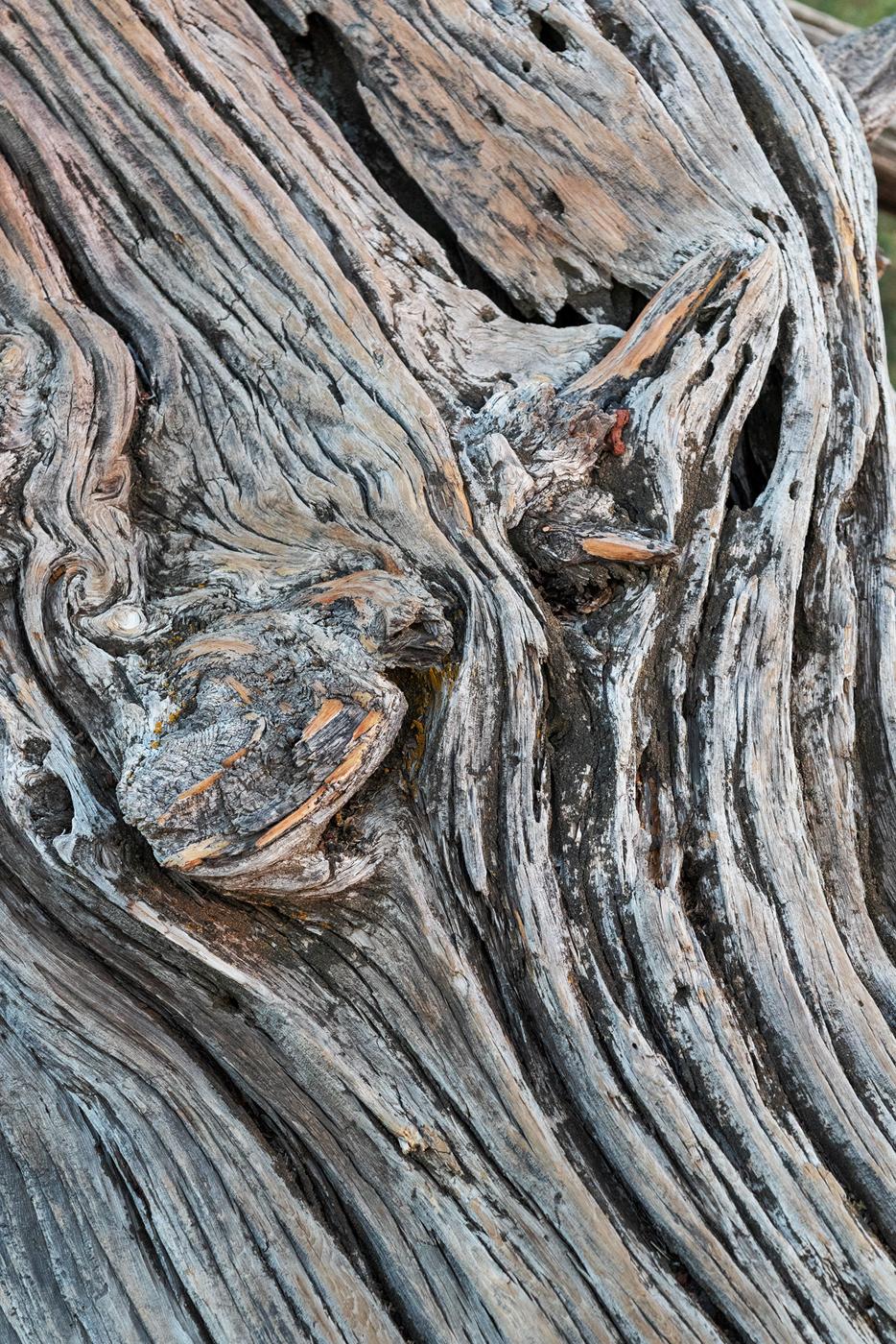 cmnm 3914 wood swirl web.jpg