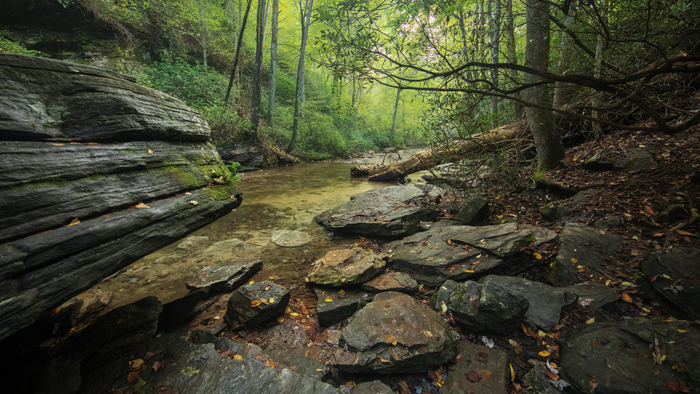 Looking Glass Creek, Pisgah National Forest