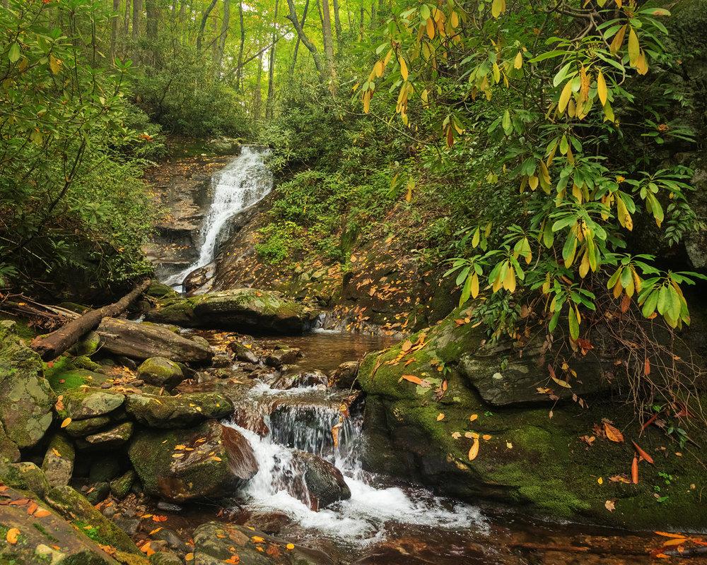 Chestnut Falls, Pisgah National Forest