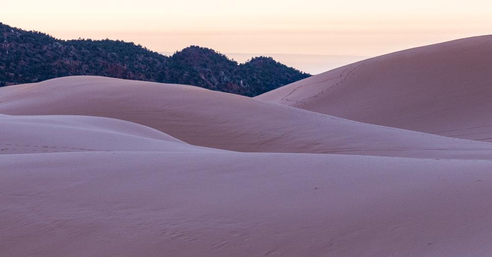 Coral Pink Sand Dunes (1 of 1)-7.jpg