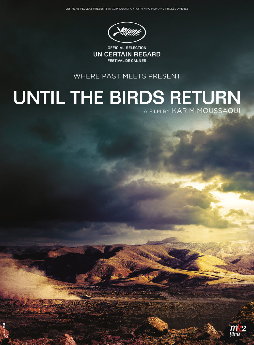 until_the_birds_return_poster.jpg