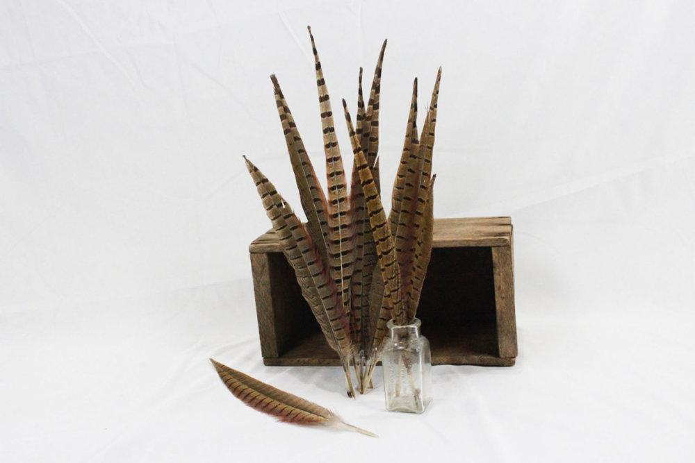 Peasant Feathers - Scavenged Vintage Rentals