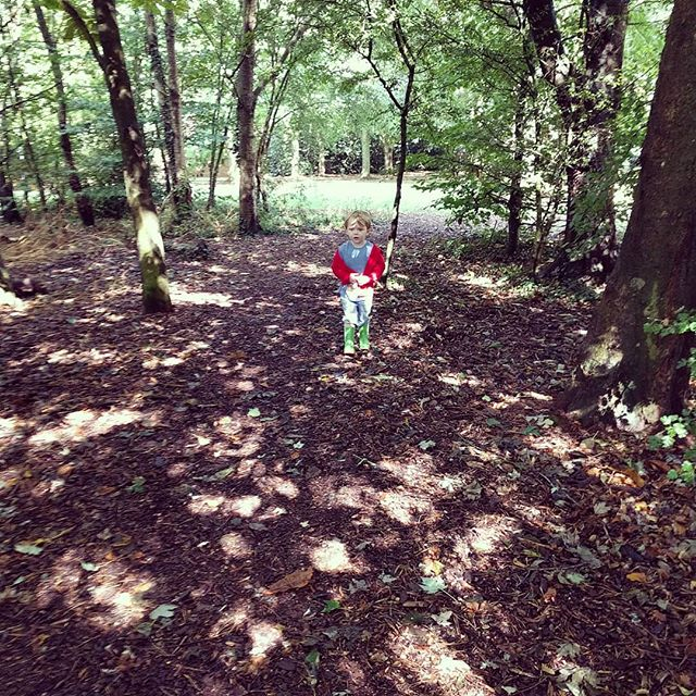 Nervously Gruffalo hunting at Kingsgate Park  #gruffalo #woods #walking #familylife #mumlife #yate