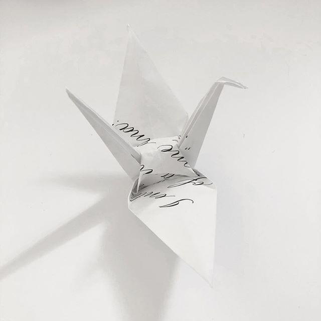 Crane No.29 (b) #craneproject29 #cranebside