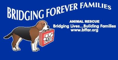 bffar-logo