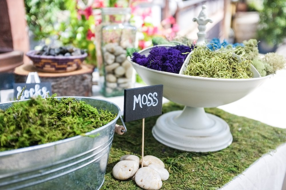 Organic Soil, Pumice, Activated Charcoal & Moss - To enhance the life and look of your creations.