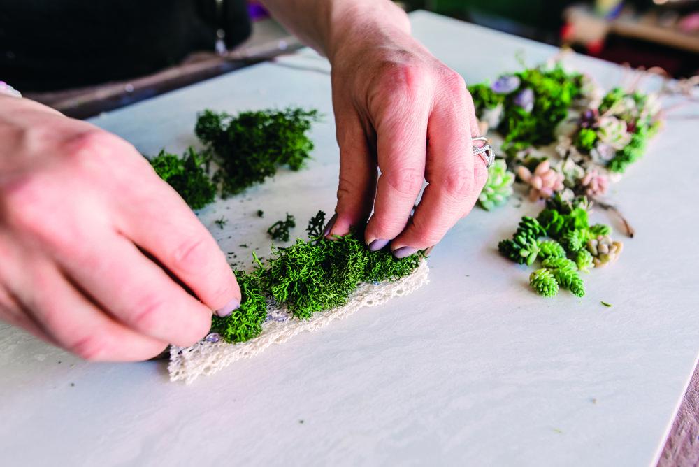Step 7:Glue on moss