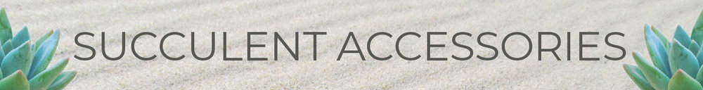 ACCESSORIES_COLLECTION_SUCCULENTS_BANNER_RENDEL_KRISTEN_GABACCIA.jpg