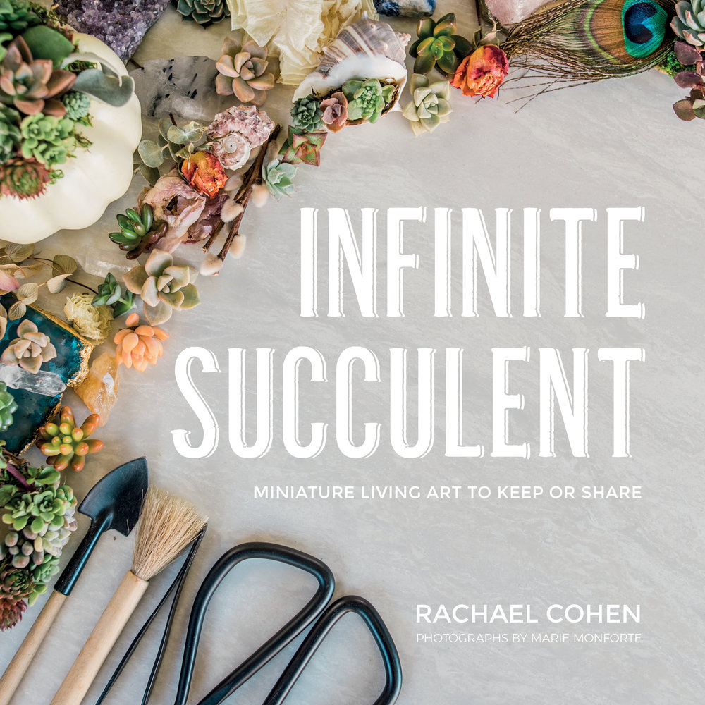book presales now open! - I am beyond grateful and so excited to announce that you can now pre-order my upcoming book Infinite Succulent: Miniature Living Art to Keep or Share!!! The book is scheduled to be released at the end of February, but you can order it now simply by clicking the links below.Indie BoundBarnes & NobleAmazon