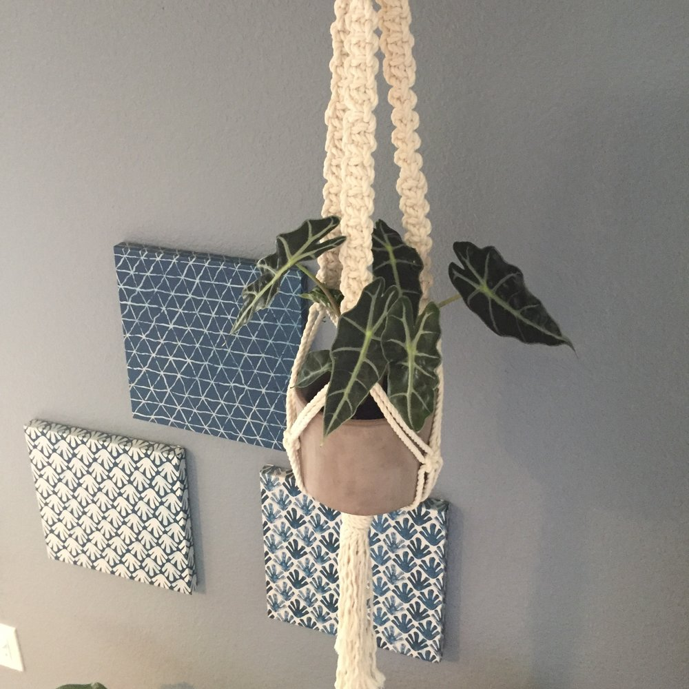 the knot spot hanging planter1.jpg